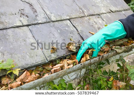 cleaning gutter blocked with leaves
