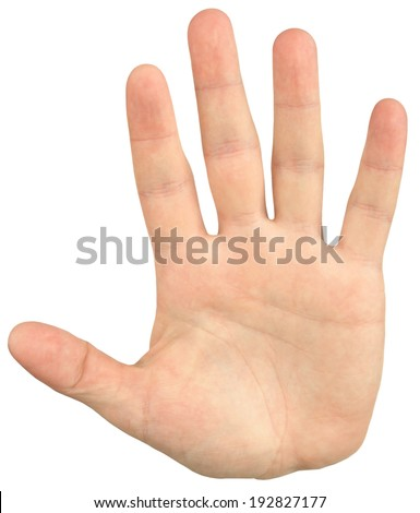 Close-up image of mans hand give a palm hand gesture, isolated on white