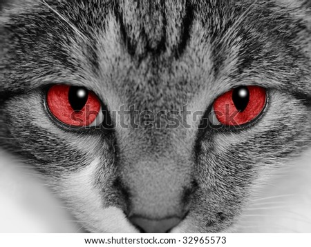 Close-up of a cat's face with selective coloring of her bright red eyes.