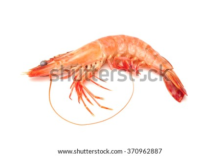 Close up of fresh boiled tiger shrimp isolated on white background