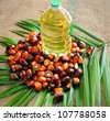 Close up of Palm Oil fruits with cooking oil and palm leaf. - stock photo