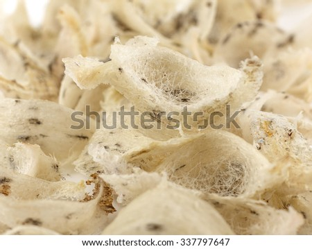 Close up of  raw swallow nest - un cook dirty on white background