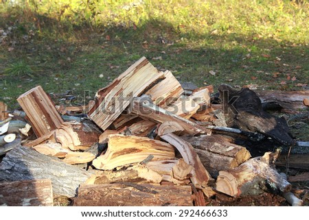 close-up of split logs in a pile on the river bank in autumn day