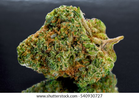 Close up of Valley Girl sativa marijuana buds on black background