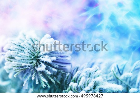 Close up of Xmas tree over abstract holiday background