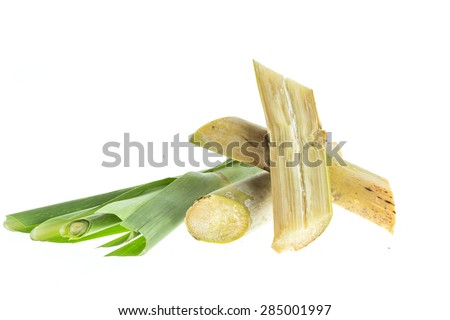 Close up sugarcane isolated on white background