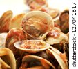 closeup of a plate with clams in marinara sauce - stock photo