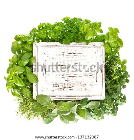 closeup of fresh herbs with wooden board for your text. marjoram; parsley; basil; rosemary; thyme. condiments.