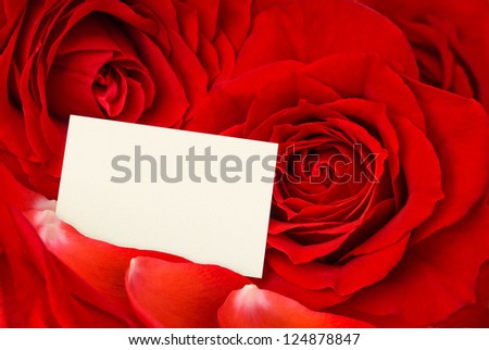 Closeup of gorgeous red roses and petals and an empty card for a loving message