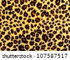 Closeup of leopard skin texture fur. - stock photo