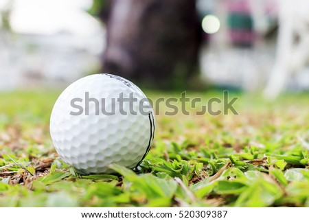 closeup of the golf ball on grass. over light and retro tone [blur and select focus background]