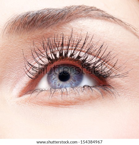Closeup shot of woman eye with false lashes