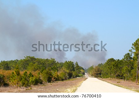 Clouds of smoke rise high from a wildfire in central Florida