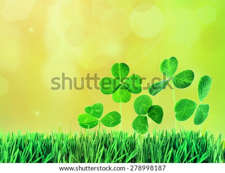 Clover leaves in grass on bright background