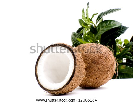 Coconuts isolated on white
