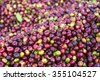 Coffee bean from South of Laos - stock photo