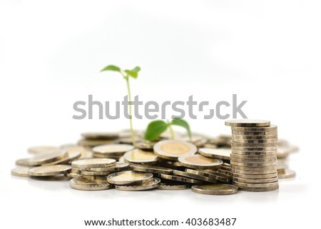 coins scattered around the base of a baby seedling.
