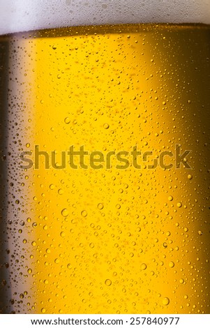 cold fresh german beer with dew drops