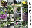 Collage of beautiful garden - stock photo
