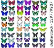 Collection of colorful butterflies - stock photo