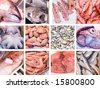 collection of images of fresh fishes - stock photo