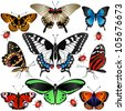 Collection of many butterflies and ladybugs. Raster version of vector - stock photo