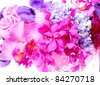 Collection of mix orchid flower - stock photo