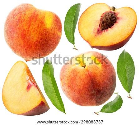 collection of peaches isolated on the white background