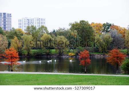 Colorful autumn in the Rebstockpark, Frankfurt am Main