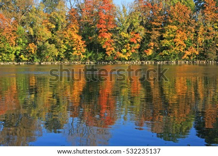 Colorful autumn trees on riverside