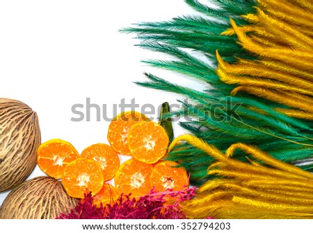Colorful flower and fruit  on white background