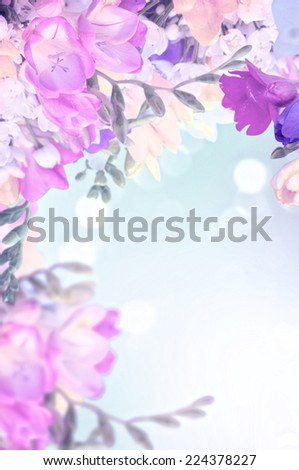 colorful freesias, floral background