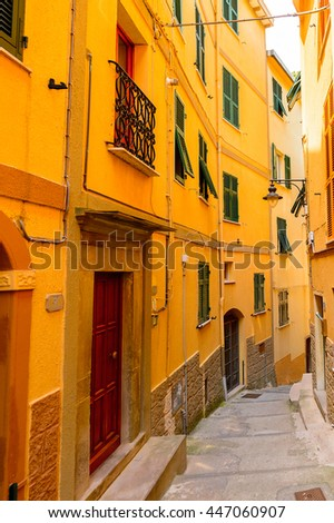 Colorful house of Manarola (Manaea),  La Spezia, Liguria, Italy. It's one of the lands of Cinque Terre, UNESCO World Heritage Site