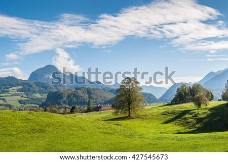 Colorful landscape with tree, mountains and blue sky