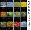 Colorful nature english calendar for 2014 in black background - stock photo