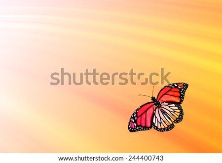Colorful sunshine background with flying butterfly