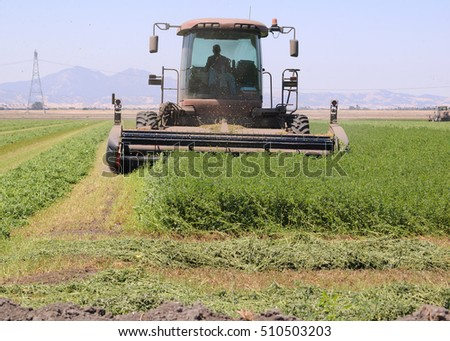 Combine harvester cutting a field of Alfalfa on central California on a summers day