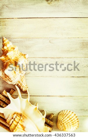 Concept of the summer time with fish star and sea shells on the wooden blue background