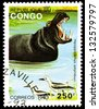 "CONGO CIRCA 1993: A stamp printed in Congo, shows Hippopotamus, with the same inscription, from the series ""Animals"", circa 1993 - stock photo"