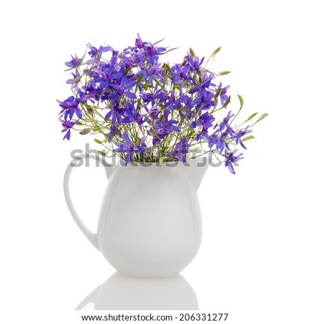 Consolida flowers in small white jar isolated against white.
