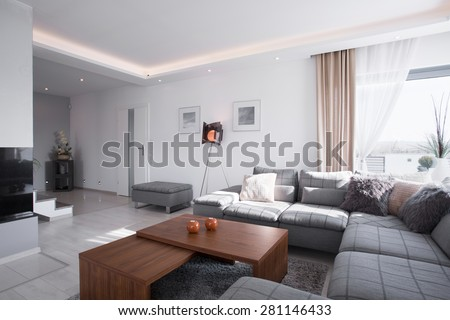 Contemporary design of spacious living room with big sofa