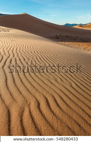 Coral Pink Sand Dunes in Arizona/Utah in the morning, Landscape Photography