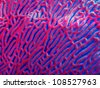 coral reef coral patterns - stock photo