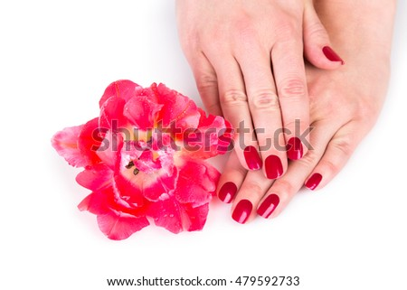 Cosmetic theme of hands with red flower with subtle shadow over white background