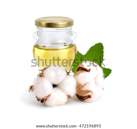 Cotton plant with oil isolated on white background.