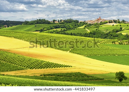 Country landscape of Monferrato (Asti, Piedmont, Italy) at summer, with vineyards and historic town