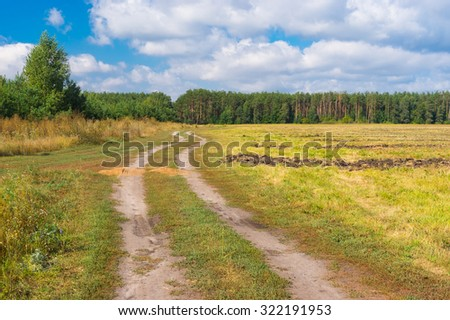 Country landscape with earth road to forest at late summer
