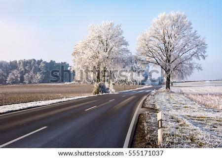 Country road in a winter landscape with frosted trees (Bavaria, Germany)