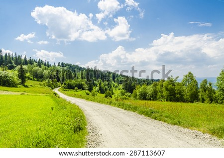 Country road on meadow