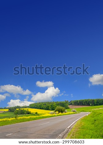 country road through canola field, blue sky with copy space